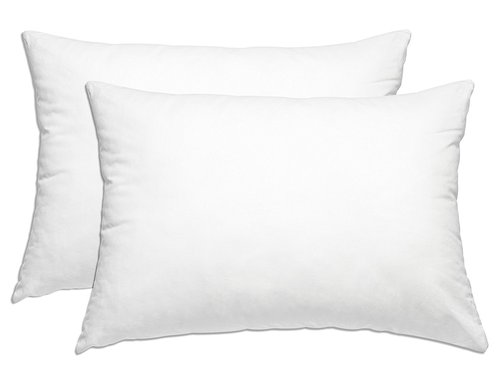 Smart Home Bedding Super Plush Pillow (Queen/Standard, 2 Pack)