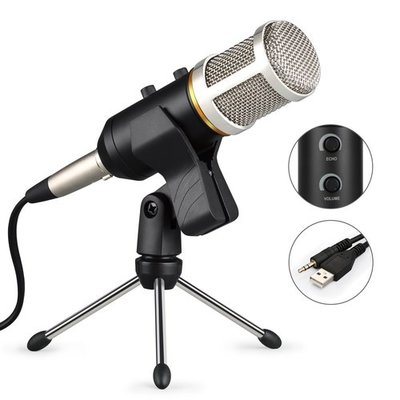 Condenser Microphone WOQI Studio Broadcasting Recording Microphone Professional Reverberation Dynamic Microphone with Tripod Holder for Family Party, Chat Room, Radio Station (Silver)