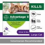 Top 10 Effective Flea & Tick Treatments for Cat in 2020