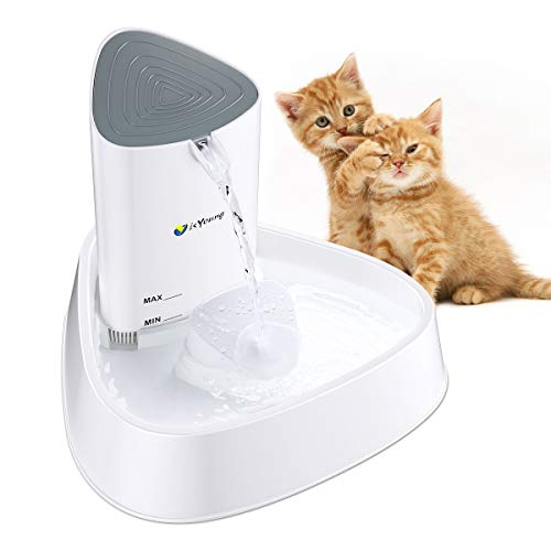 isYoung Cat Fountain LED Pet Water Fountain